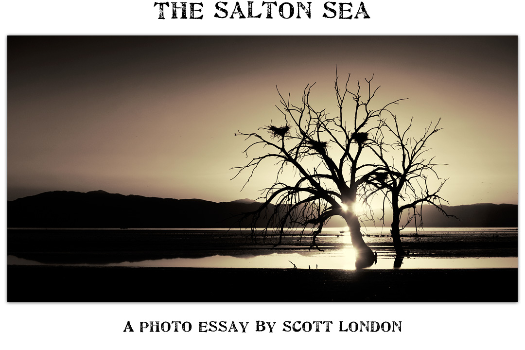 salton sea photo essay The salton sea: a photo essay (scott london photography) plagues and pleasures on the salton sea trailer (green planet films.